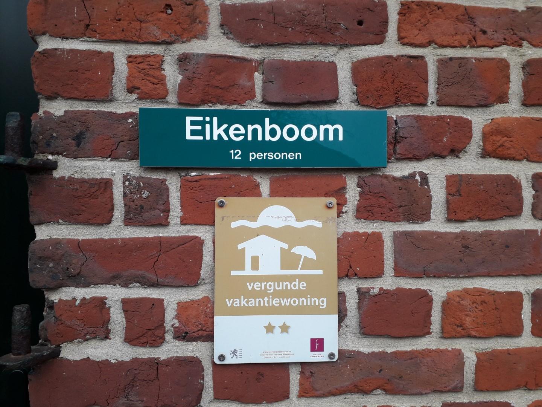 Eikenboom (12p)